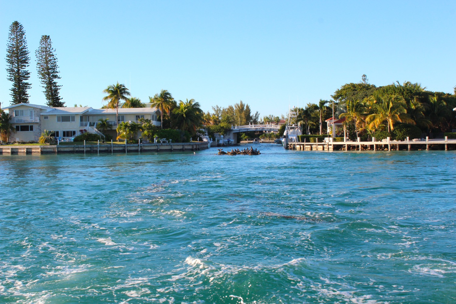 72 hours in the florida keys
