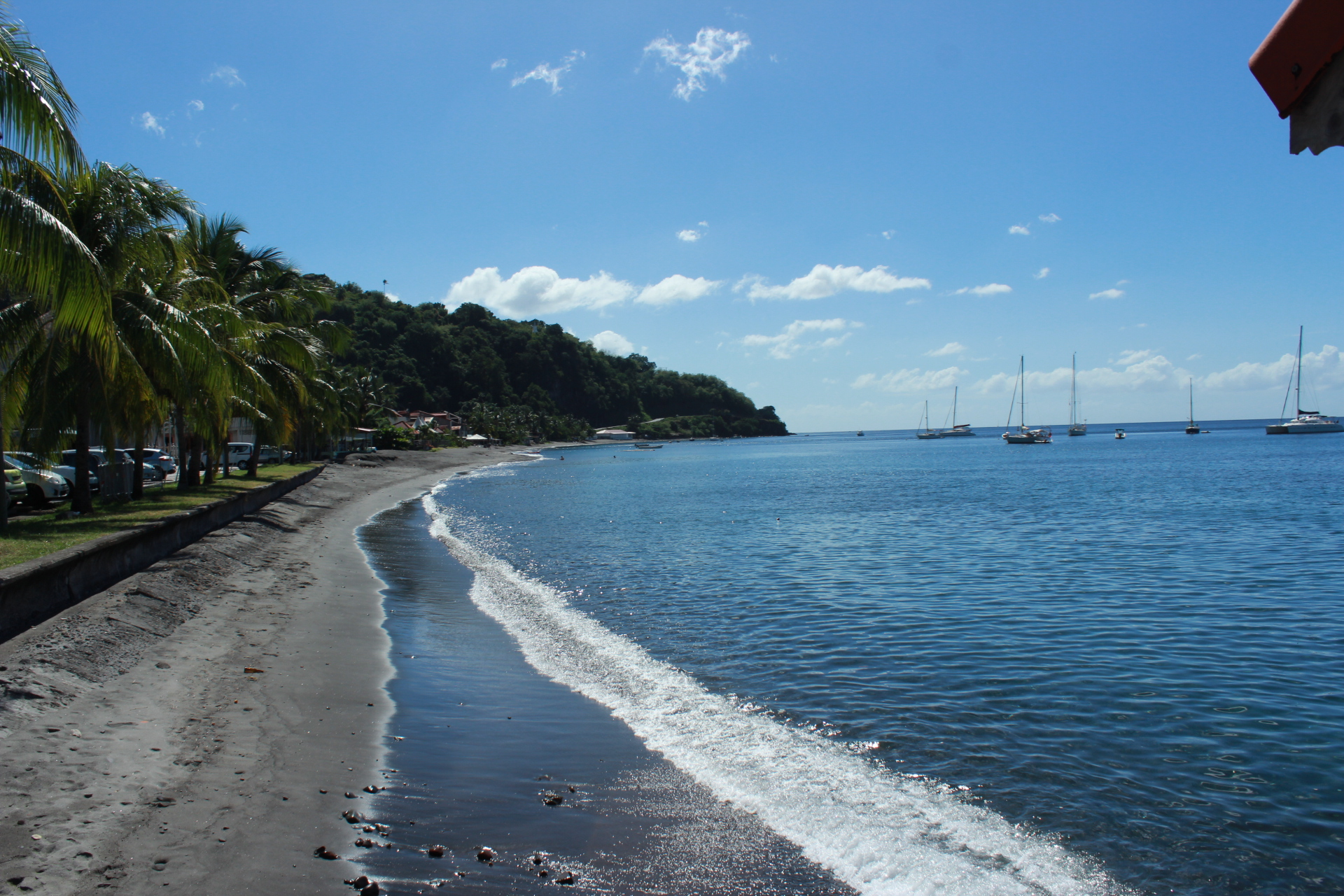 what to do in martinique